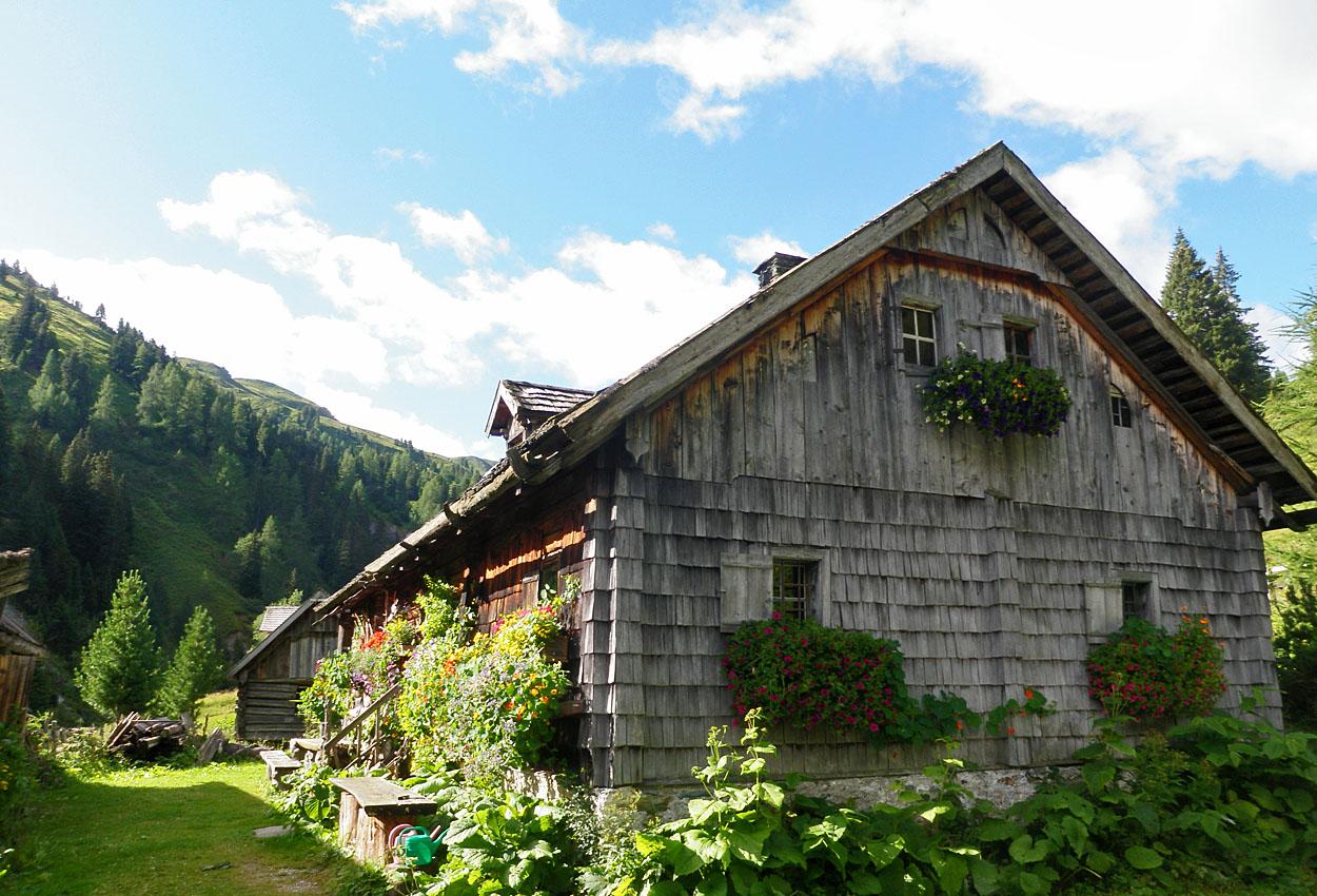Hütte Riedingtal Zederhaus buchen