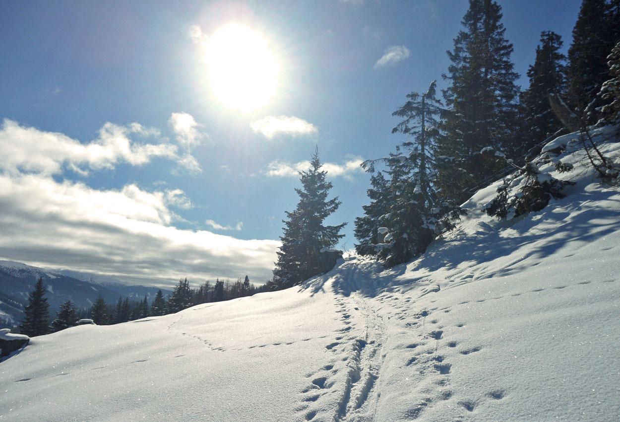 Skitour Lungau Zederhaus Almhütte